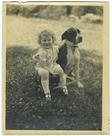 Little Girl with Pit Bull