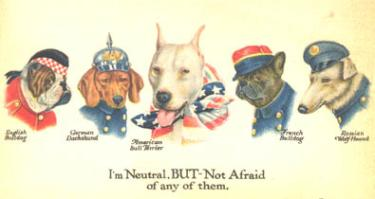 World War I Pit Bull Poster