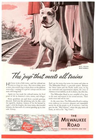 Pit Bull Advertisements
