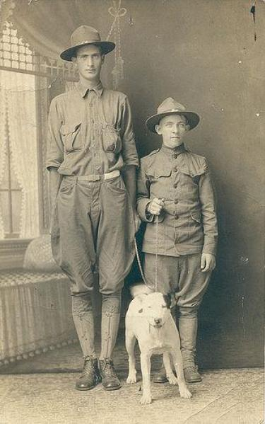 WWI Pit Bull Service Dog