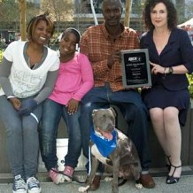 Pit Bull Hero – Pitbull Saves Family in Fire